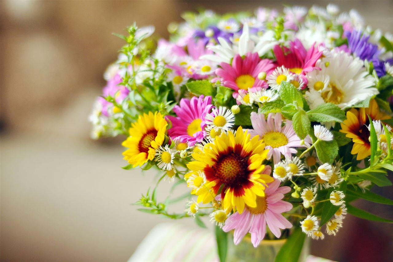 Fiori Per Composizioni Floreali.Faxiflora Blog Composizioni Floreali Fai Da Te Guida
