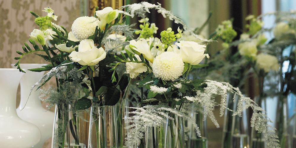Fiori Bianchi Con Centro Nero.Faxiflora Blog Fiori Bianchi Significato
