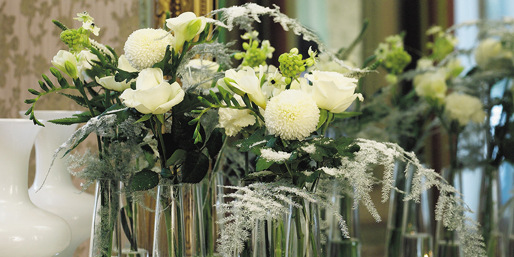 Fiori Bianchi Gambo Lungo.Faxiflora Blog Fiori Bianchi Significato
