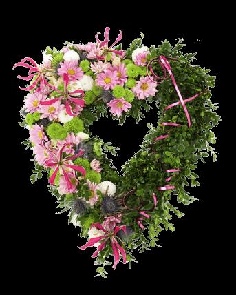 Catalogo Fiori.Faxiflora Catalogo Fiori A Domicilio